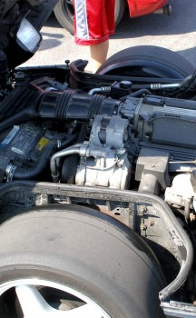 Corvette engine bay flanked by major meat