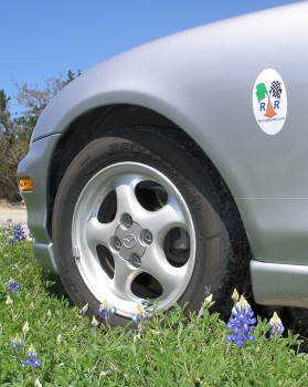 Karlino admires Texas Hill Country Bluebonnets - they're his favorite colot: BLUE!