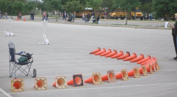 Cones serving as curbing...